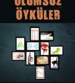 olumsuz-oykuler_2014
