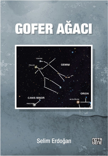 gofer-agaci_selim-erdogan_2014