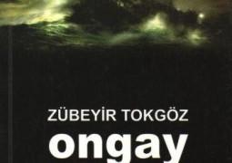 ongay_zubeyir-tokgoz_2007